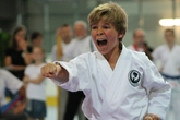 Karate-2012