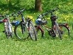 U-Tour-Bike